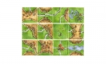 Carcassonne: The River I
